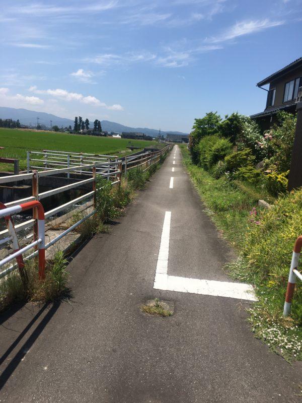 自転車道風景