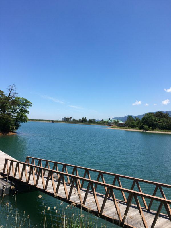 桜ヶ池全景風景